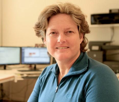 Anette Bargel Affärsnyttig webb & PR